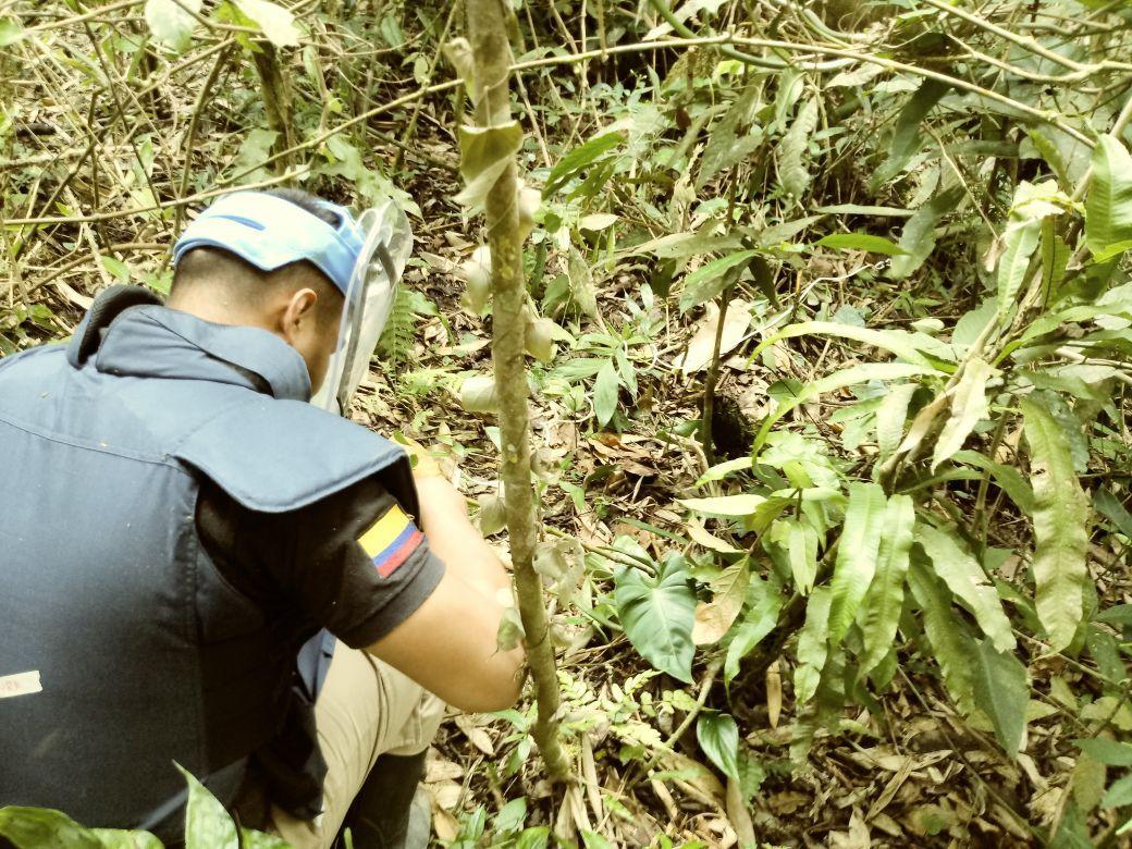 Neutralizaron dos artefactos explosivos en Lérida y Rovira