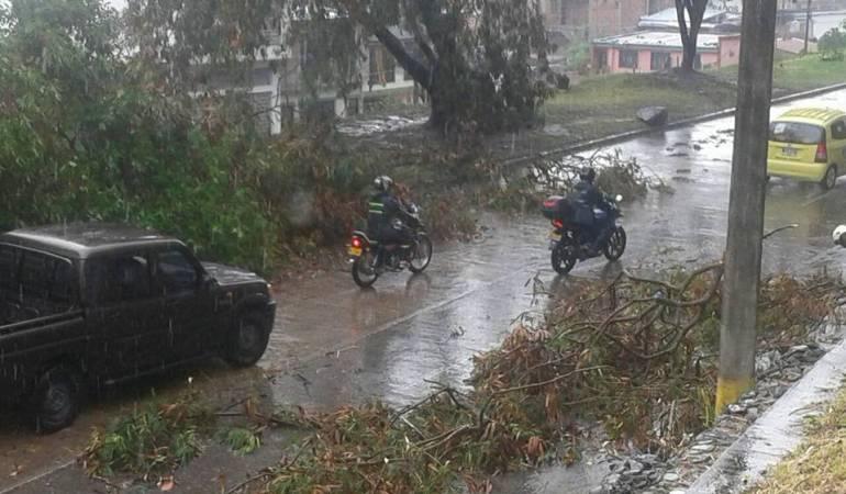 Van 106 familias damnificadas en apenas 10 días de temporada de lluvias