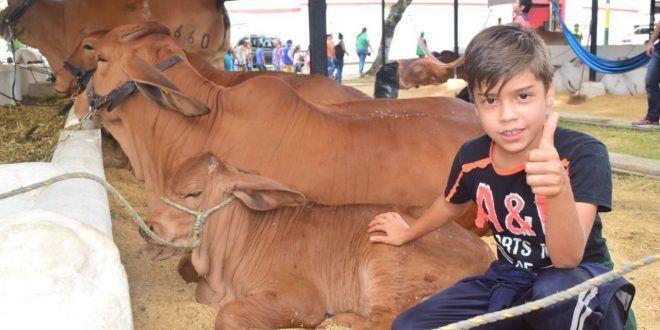 Prográmese para asistir a la tercera Feria Bovina y 51° Exposición Ganadera de Ibagué