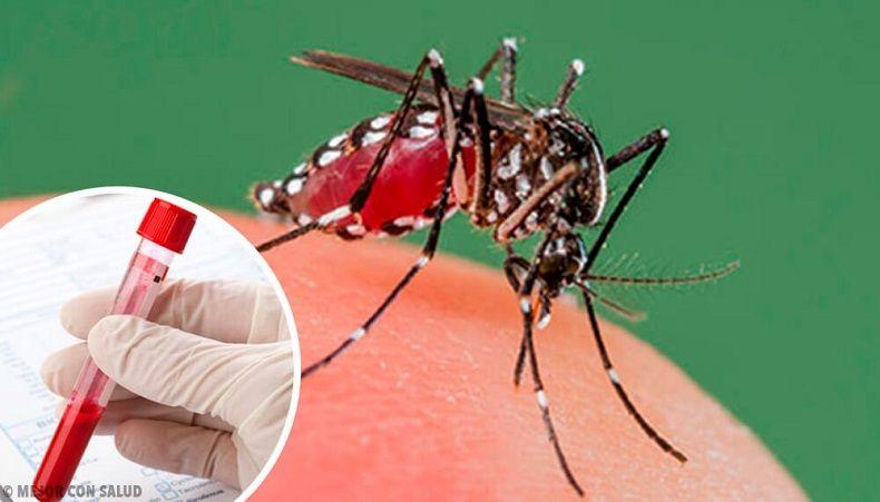 Dengue en el Tolima: Con más del doble de los casos del Covid 19