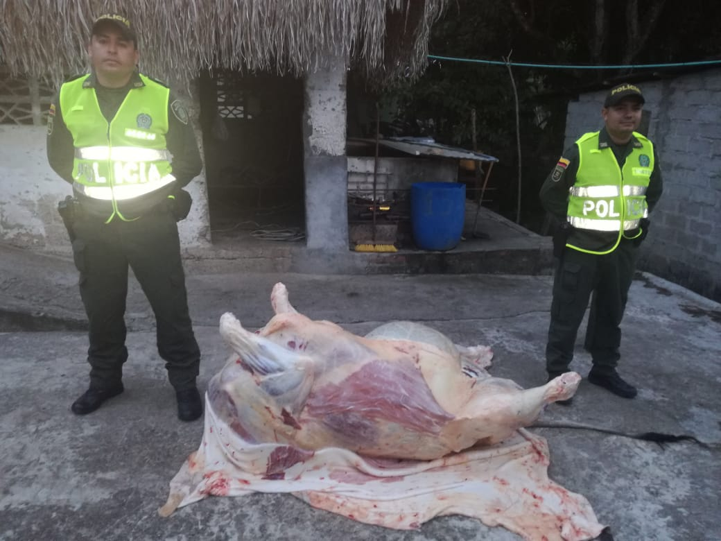 Policía del Tolima se incautó de 300 kilos de carne proveniente de matadero clandestino en Saldaña