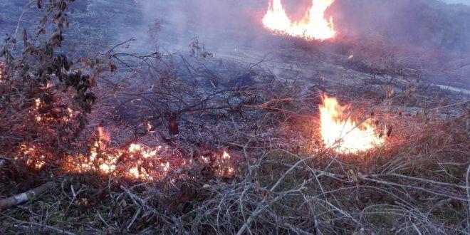 Ideam declaró 'alerta roja' en Ibagué por incendios forestales