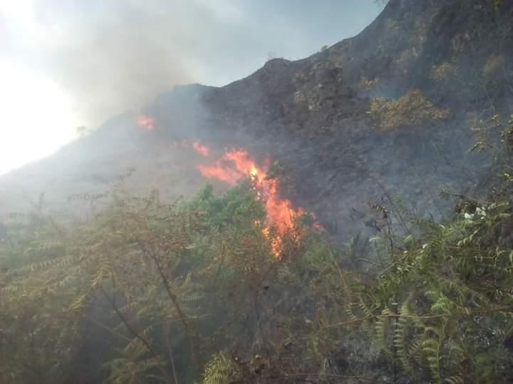 Continúan los incendios en el Tolima