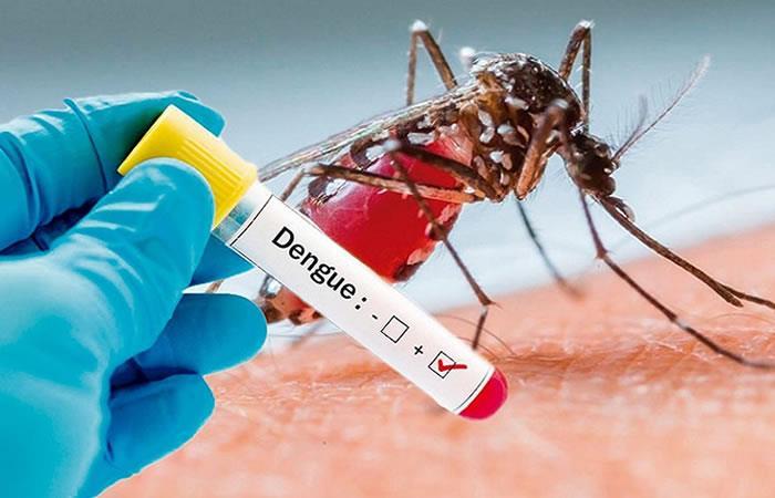 Alarma por aumento de casos de dengue en el País