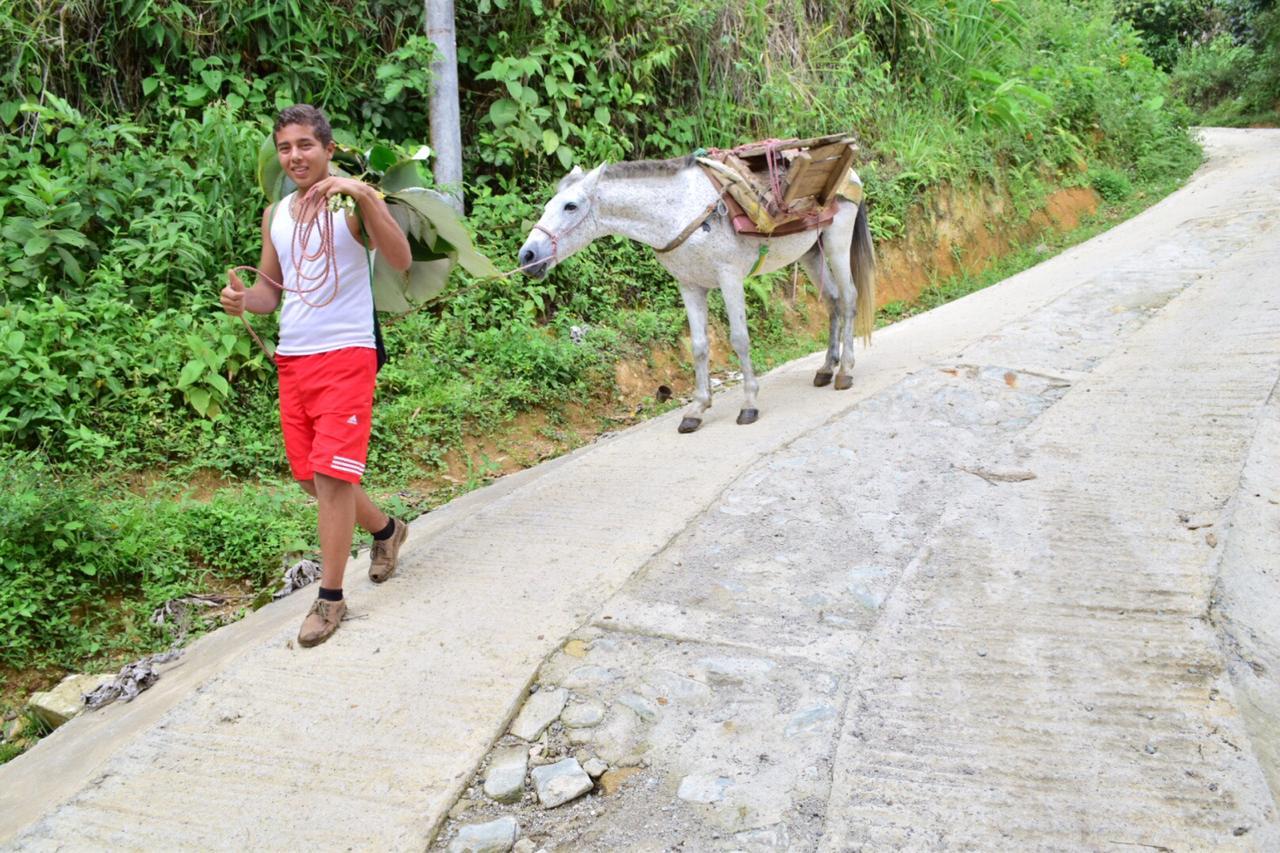 Dos kilómetros y medio de placa huella han sido construidos en la zona rural de Ibagué