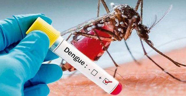 Autoridades investigan 153 casos probables de dengue en Ibagué