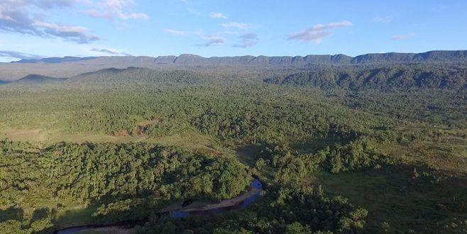 Expedición al bosque de Galilea llega con resultados favorables para que se considere reserva natural