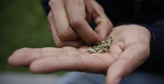 Ya no hay prohibición de consumo de licor y sustancias psicoactivas en los parques y espacio público