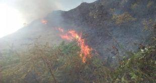 Las altas temperaturas comienzan a generar estragos en el Tolima