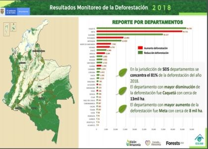 Tolima reduce la deforestación de una manera significativa según estudio del Ideam
