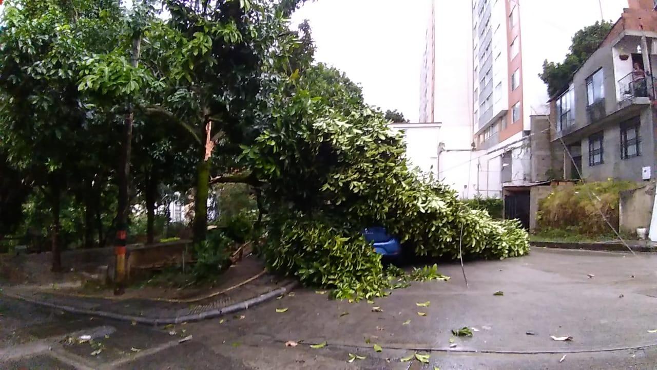 Los 23 minutos de fuerte lluvia y borrasca que colapsaron a Ibagué