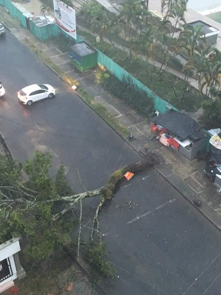 Emergencias por lluvias y fuertes vientos en la tarde de este viernes