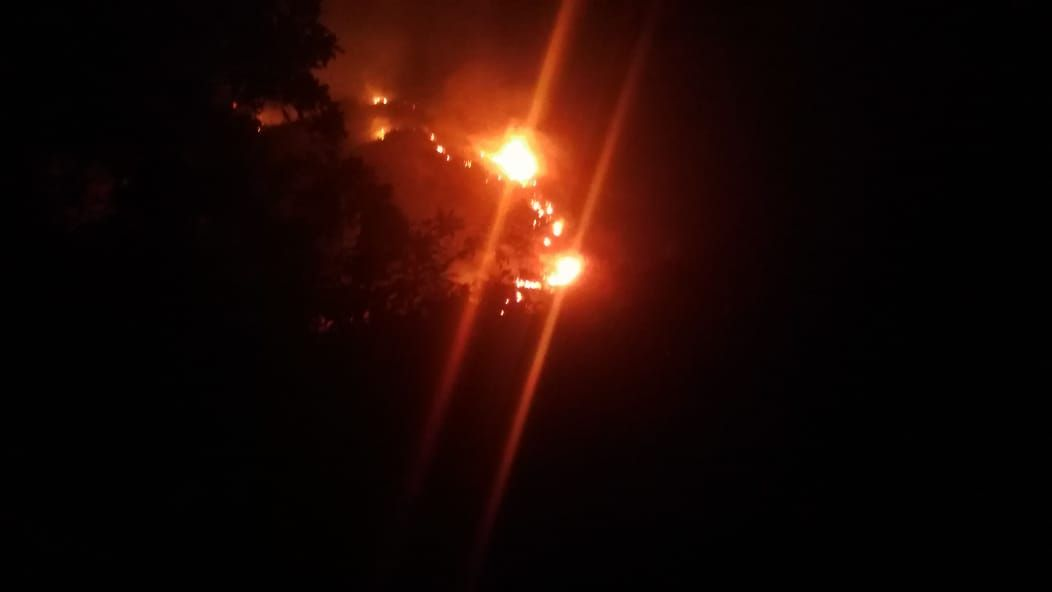 Casi 40 hectáreas de bosque han consumido incendios forestales en el Tolima en los últimos días