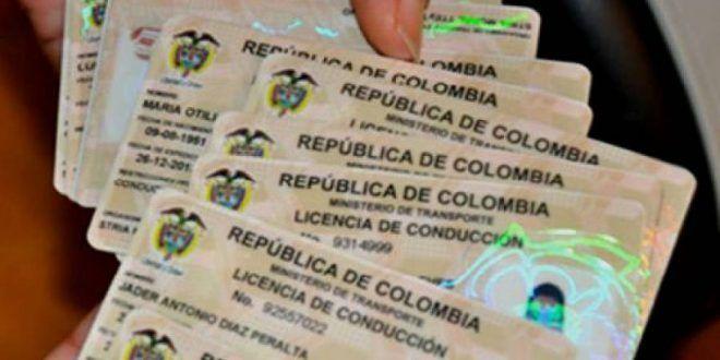 Por impresión de placas y licencias, Municipio ha recaudado $813 millones
