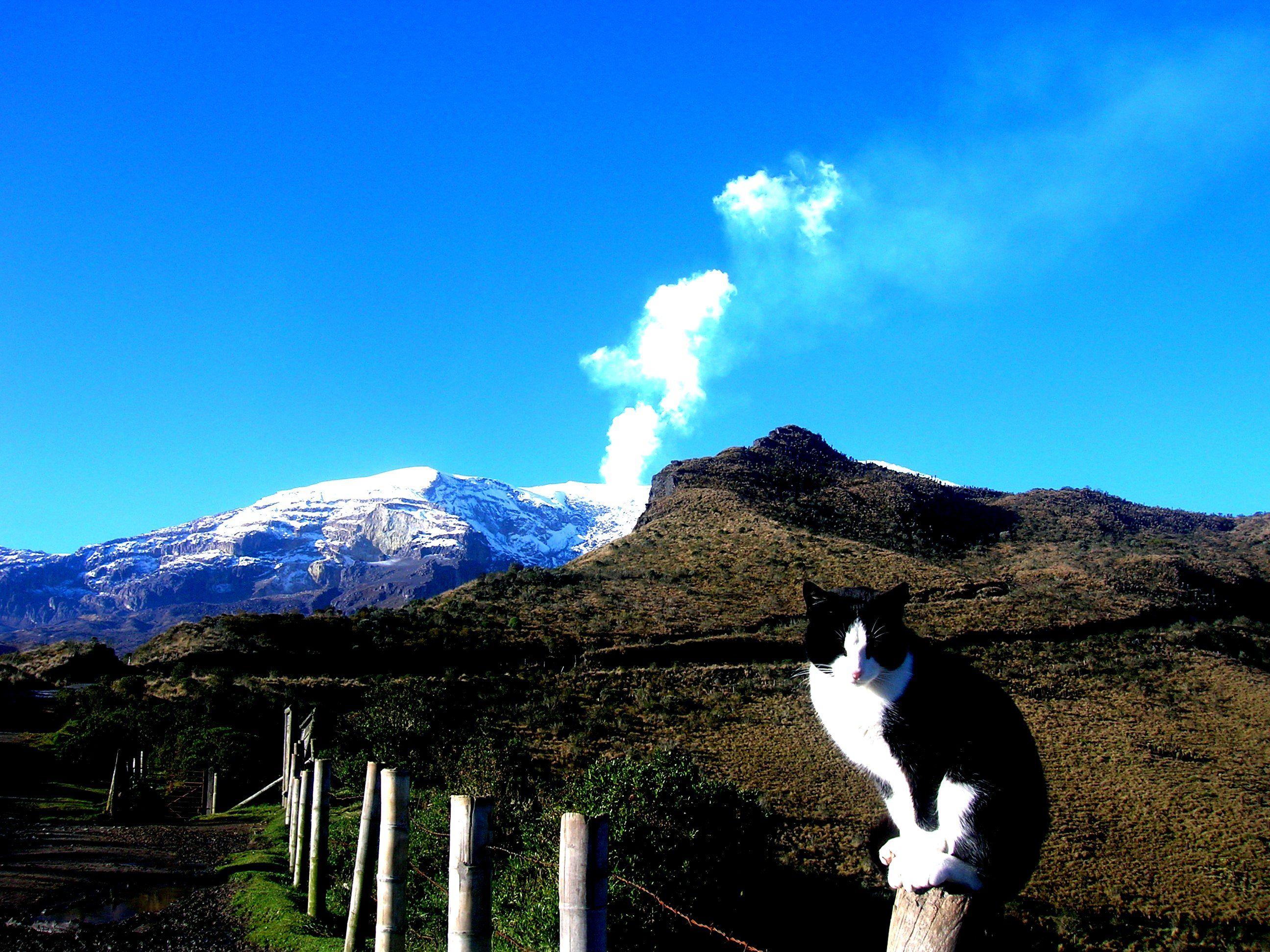 Reportan nuevas emisiones de gases en el Volcán Nevado del Ruiz