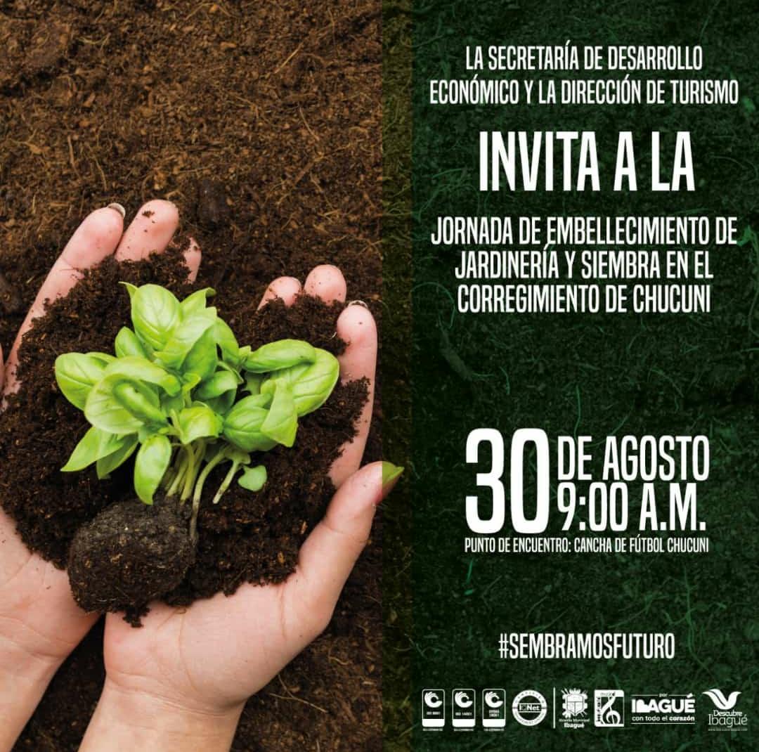 Este viernes habrá jornada de siembra de árboles en Chucuní
