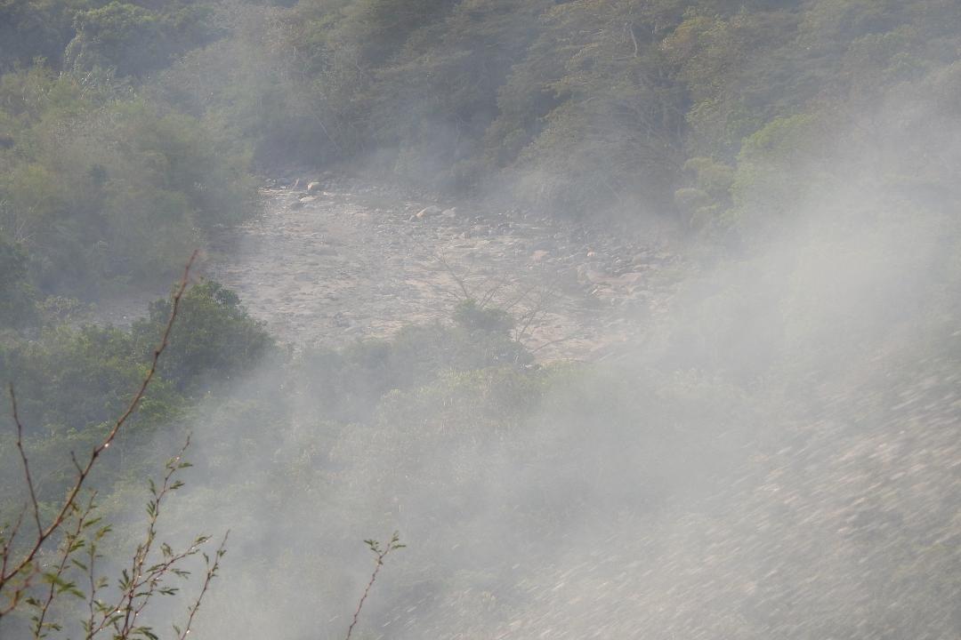 Conozca los daños a la salud y medio ambiente que deja los incendios forestales