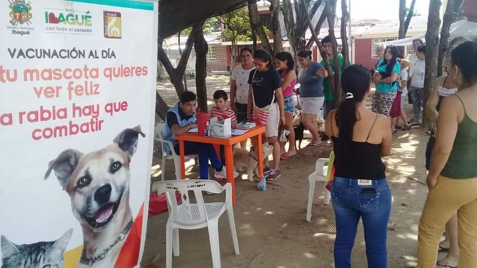 Continúan jornadas de vacunación para mascotas en Ibagué