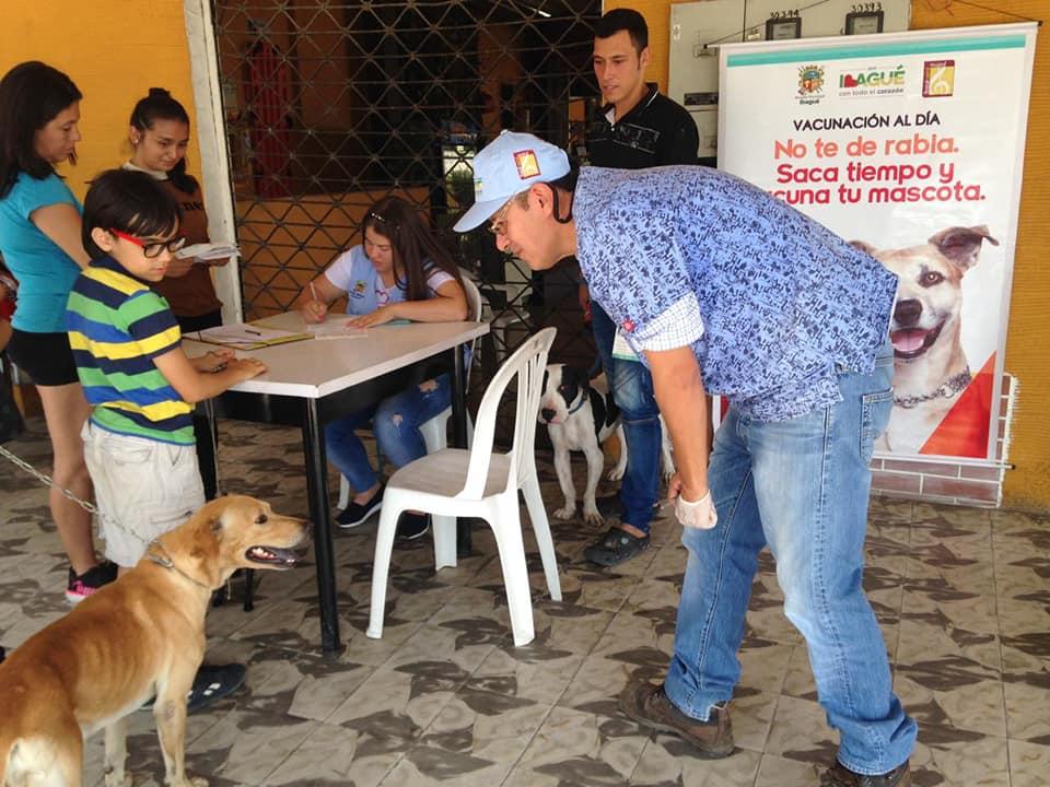 31.961 mascotas han sido vacunadas contra la rabia