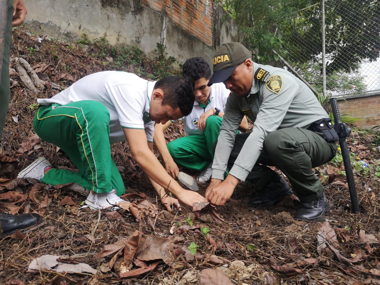 Grupo de turismo de la Metib sembró árboles en microcuenca del Hato de la Virgen