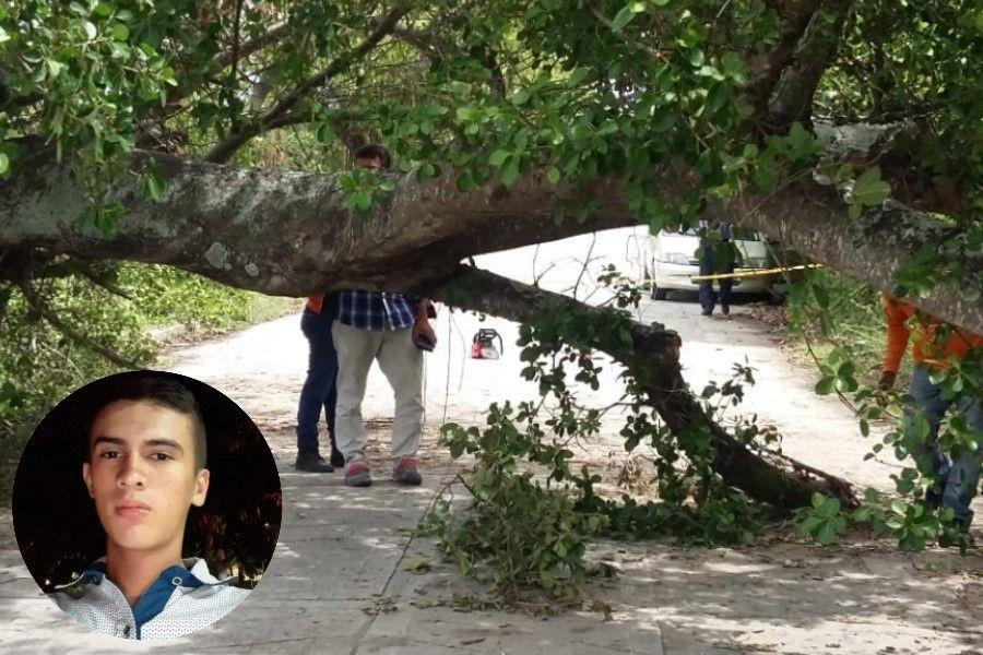 Un motociclista falleció luego de estrellarse contra un árbol atravesado en la vía