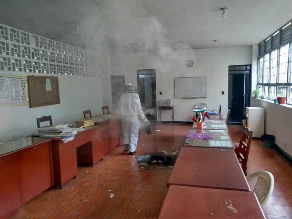 Abejas atacaron a 53 personas de institución educativa en el Líbano
