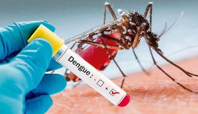 Tolima registró 14.836 casos de dengue en 2019