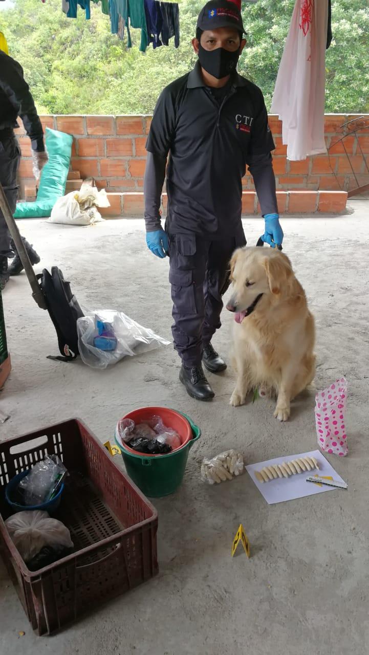 Perro del CTI de la Fiscalía detectó tres kilos y medio de base de coca