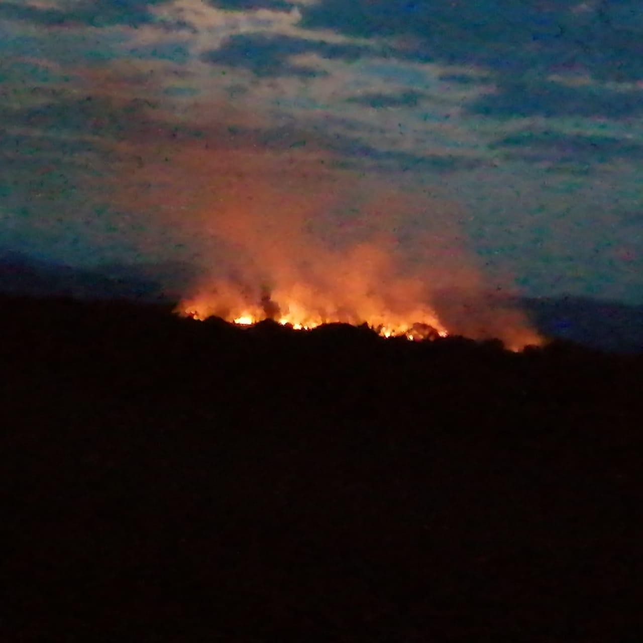Organismos de socorro atendieron incendios en diferentes puntos del Tolima durante el fin de semana