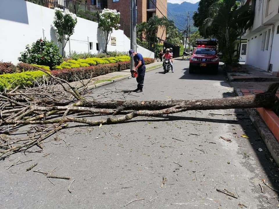 Reporte de las emergencias del fin de semana por lluvias y borrascas en Ibagué