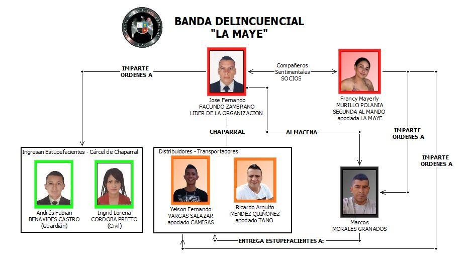 Cayeron 'Los Mayes', traficantes de coca y marihuana en el Tolima
