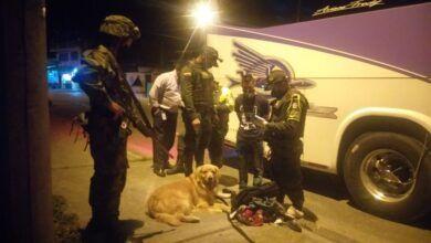 Photo of 'Killer', el perro que detectó clorhidrato de cocaína en maleta de pasajero de bus