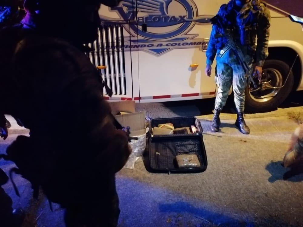 'Killer' lo hizo de nuevo: Detectó 40 kilos de marihuana en maleta y caja de pasajero en un bus