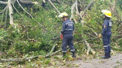 Photo of Estas fueron las emergencias por lluvias de la noche anterior en Ibagué