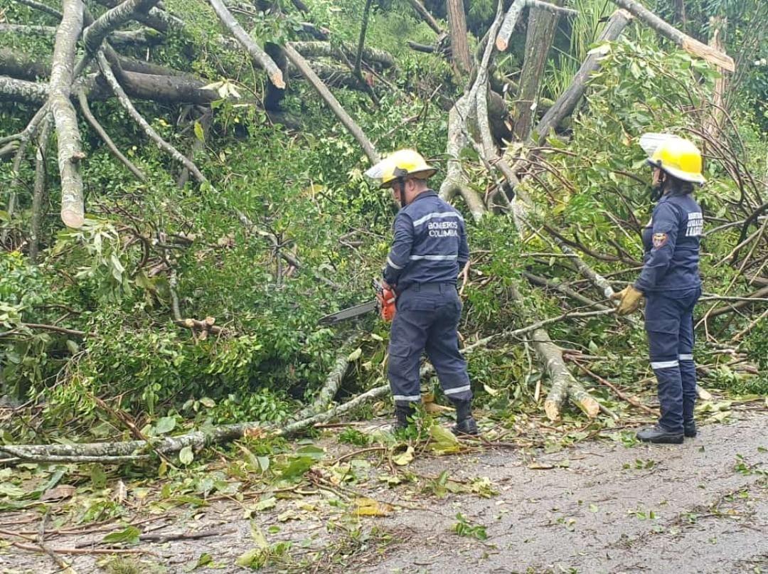 Estas fueron las emergencias por lluvias de la noche anterior en Ibagué