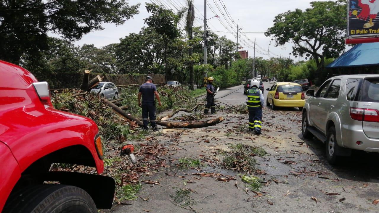 Emergencias por lluvias en varios puntos de Ibagué