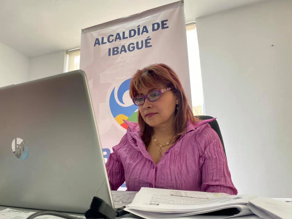 Alcaldía presentó ante el Concejo las apuestas para reactivar la economía de Ibagué
