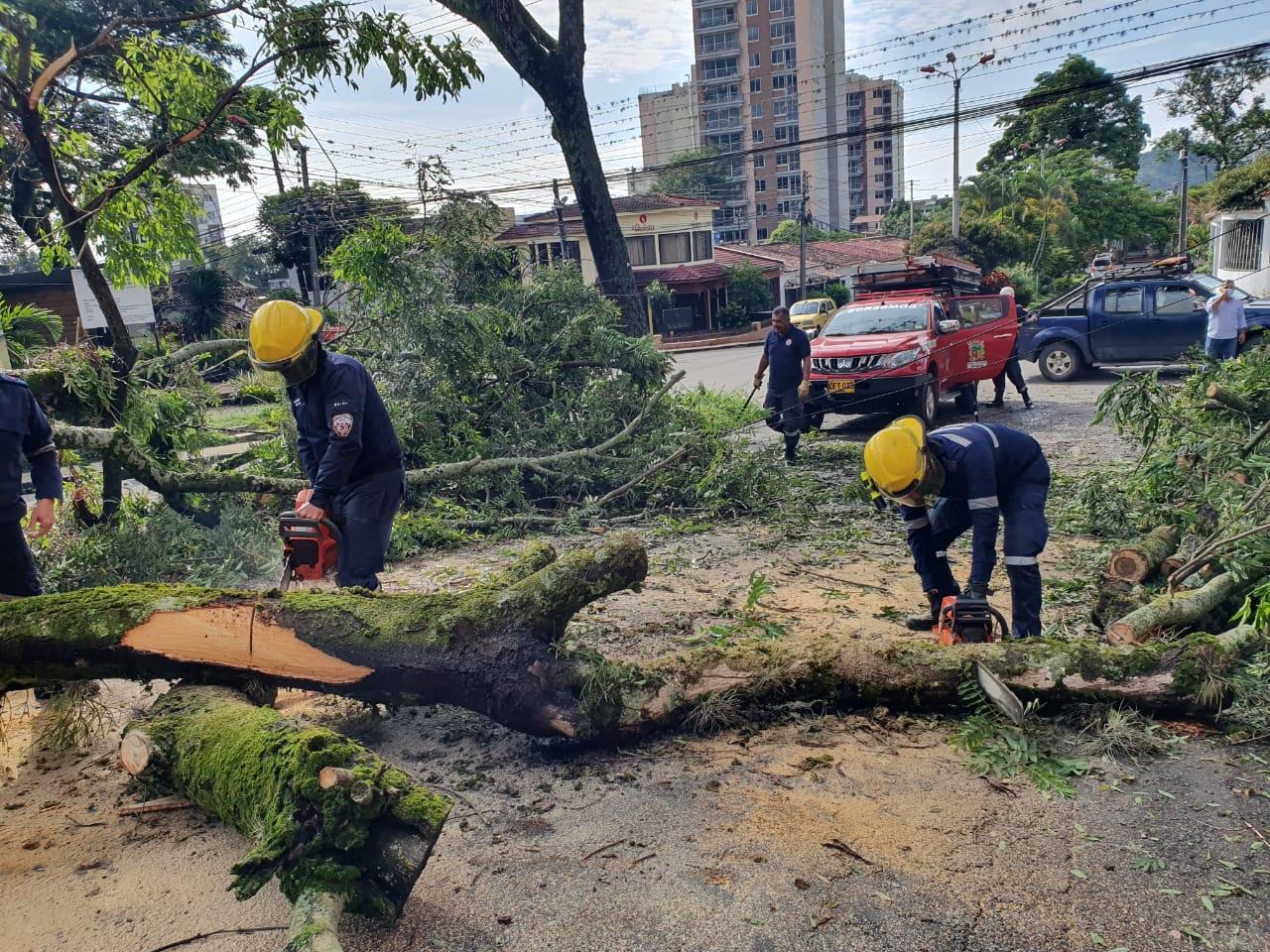 Organismos de socorro de Ibagué están en alerta por recrudecimiento de lluvias
