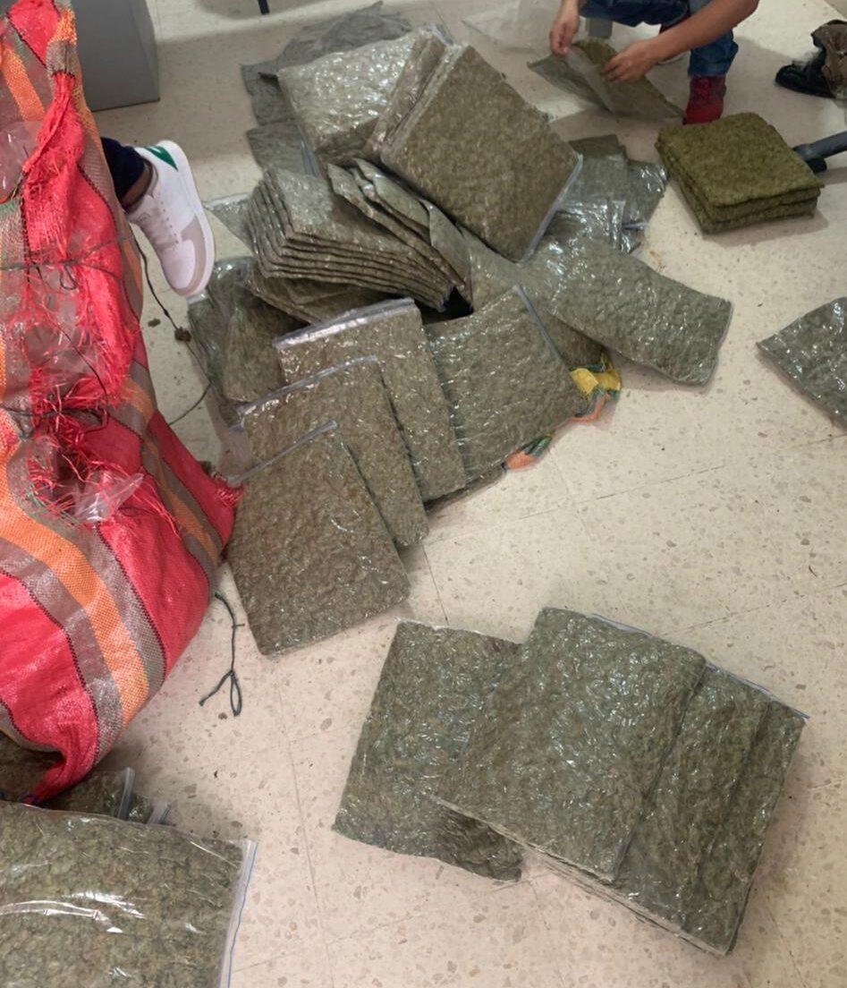 Fueron incautados 129.635 kilos de marihuana en el corregimiento de Castilla
