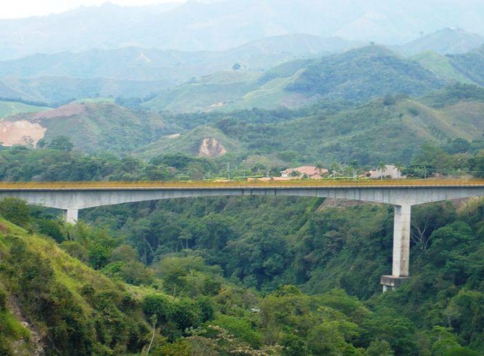 Se busca mejorar medidas de seguridad en el 'Puente de la Vida' en Ibagué